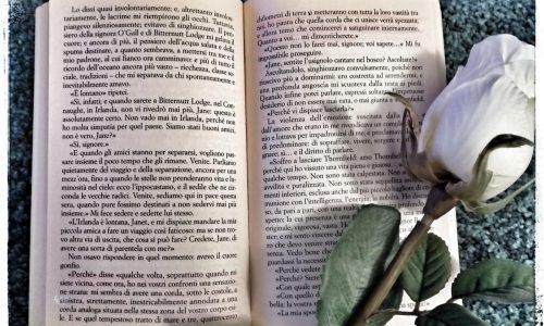Estratto da Jane Eyre di C.Bronte